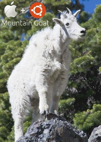 Mountain Goat Ubuntu on Apple Hardware